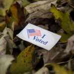 """I Voted"" sticker in a pile of leaves"