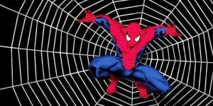Spider-man on a web.