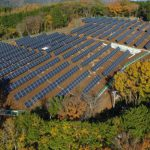 A solar farm in the forest.