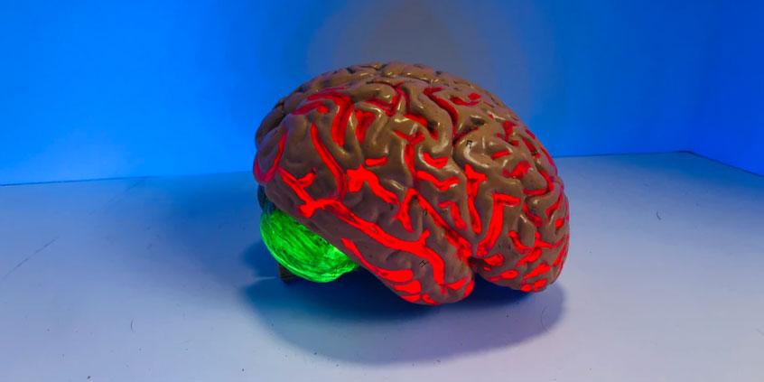 A lighted brain sculpture