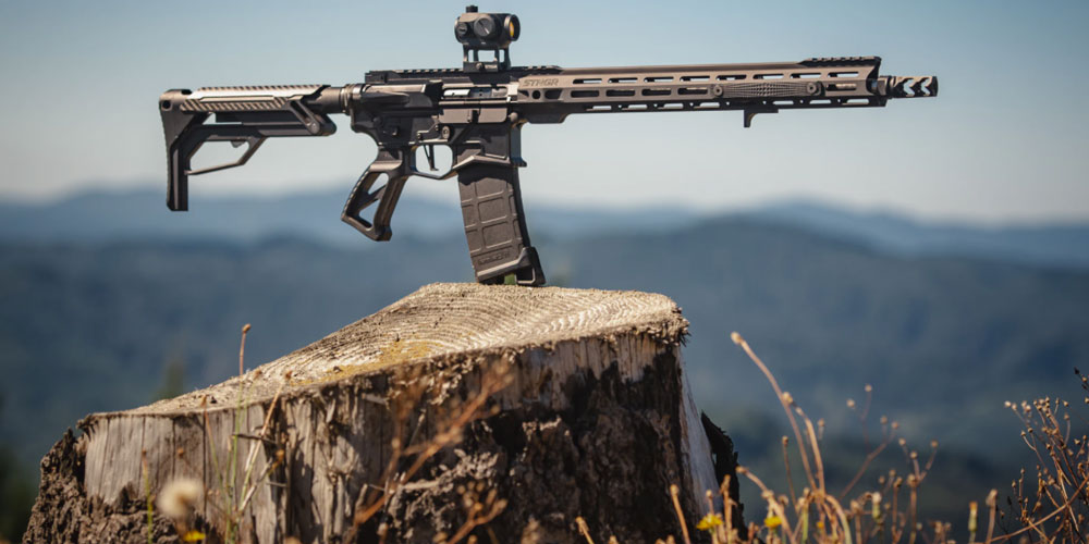 A gun on a tree stump