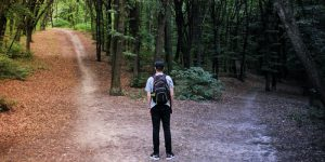 A man picks a path in the woods